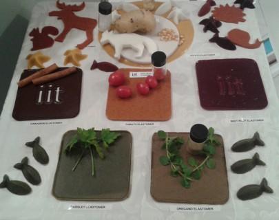 Vegetali e prodotti derivati